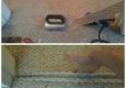 Atlanta Carpet Repair Expert - Atlanta, GA. Doorway berber carpet seam repair service.    Atlanta Carpet Repair Expert