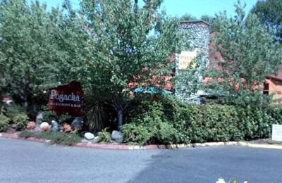 Pogacha Restaurant - Issaquah - Issaquah, WA