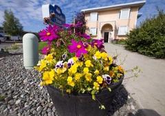Puffin Inn - Anchorage, AK