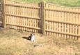 Local Fence Company - Methuen, MA