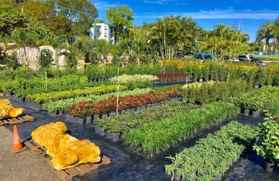 Mar-Pines Nursery - Hollywood, FL