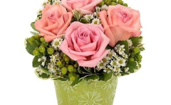 Awesome Blooms flowers & gifts