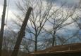 Wall To Wall Tree Service - Ringgold, GA