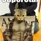 SuperStar Pet Services - Las Vegas, NV