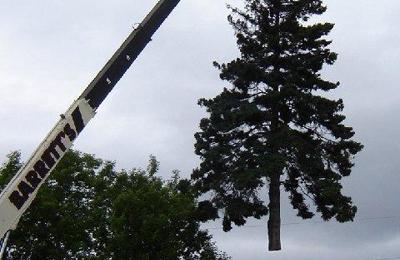 Barrett's Tree Service - South Burlington, VT