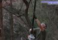 Spirit of Excellence Tree service - Rio Vista, TX