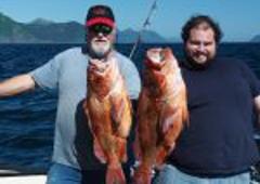 Bob's Trophy Charters - Homer, AK