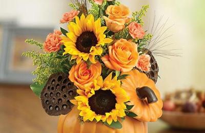 Wandas flowers gifts 201 n line st creal springs il 62922 yp wandas flowers gifts creal springs negle Gallery