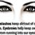 Eyezone Inc