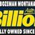 J.C. Billion GMC Buick