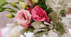 Flowers Unveiled - Davie, FL