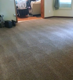 Extreme Clean - Bloomington, IL. ISU student home. Before and after pictures. We specialize in severe stain removal.