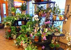 Bagoys Florist & Home - Anchorage, AK