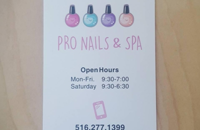 Pro Nails Spa Glen Head