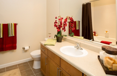 Arbor Glen Apartments - Lakeland, FL