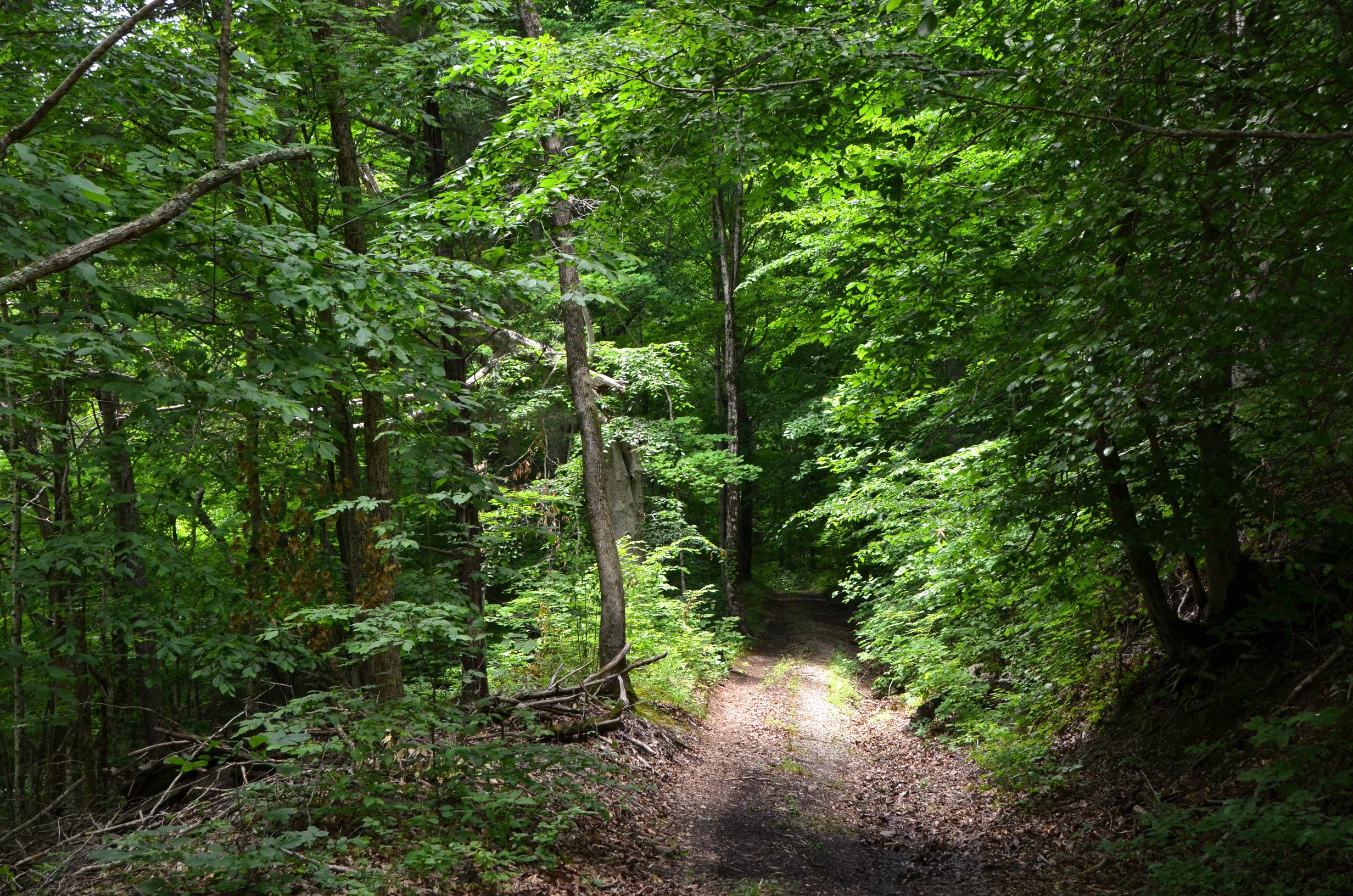The Retreat at Center Hill Lake, Smithville TN