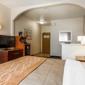 Comfort Inn & Suites - Oakland, CA