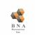 B N A Resources Inc