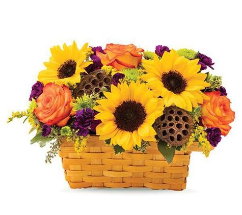 Nature's Splendor Florist - Lexington, KY