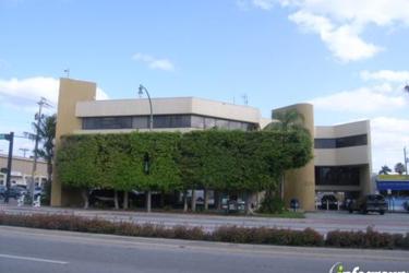 MLM University