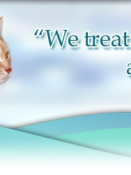Dog & Cat Surgery and Wellness Clinic