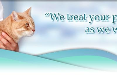 Dog & Cat Surgery and Wellness Clinic - Batavia, NY