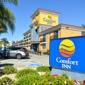 Comfort Inn - Castro Valley, CA