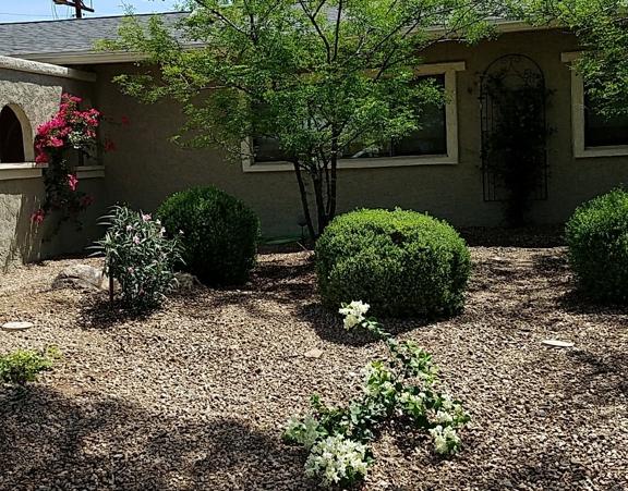 Luis Landscaping, LLC - Glendale, AZ