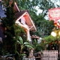 Spider House Cafe and Ballroom - Austin, TX