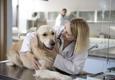 Encanto Pet Clinic - Tucson, AZ