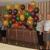 BalloonCity Zephyrhills - CLOSED
