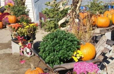 Summer Garden Nursery - Litchfield, MN