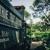 True Tree Service Miami