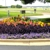 O'Hara Landscape/Lawn Care Inc