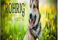 Rohrig Animal Hospital - Arlington, NE