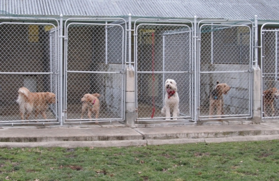 Central Kennels 8708 Central Ave Sylvania Oh 43560 Ypcom