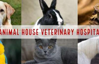Animal House Veterinary Hospital - Fairbanks, AK