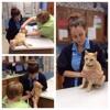 Hope Springs Veterinary At Pembroke - CLOSED