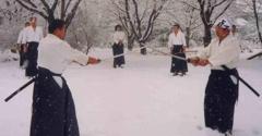 Aikido White Plains - White Plains, NY
