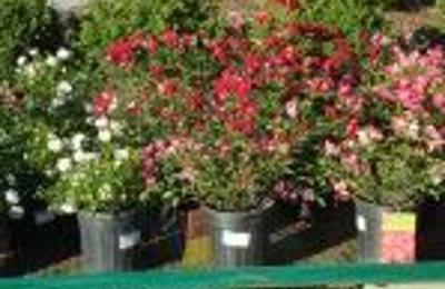 Kiefer Landscaping Nursery Inc Durham Nc