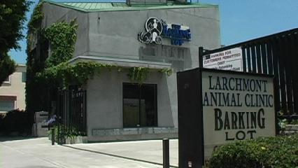Larchmont Animal Clinic - Los Angeles, CA